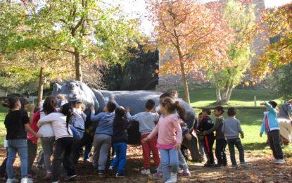P-5 visita Vallparadís a la tardor !!!