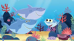 Baby shark – P5B