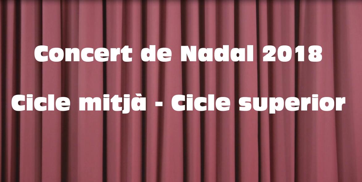 Concert de Nadal 2018 cicle mitjà i cicle superior