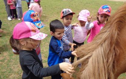 Visita de P-3 a la granja de Can Deu!