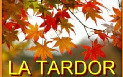 TREBALLEM LA TARDOR A P3